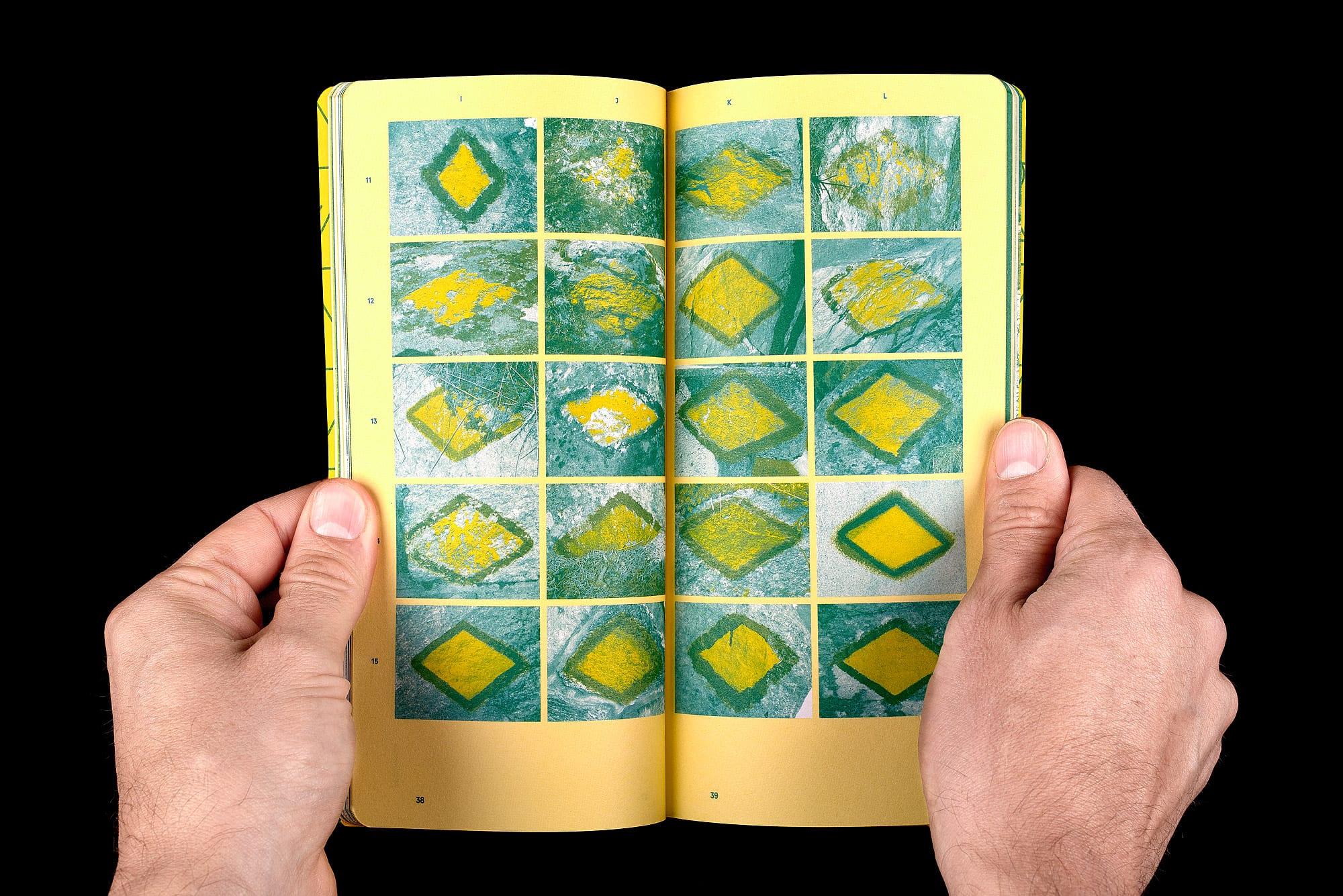 BB02 Losanges sur pierres des Alpes suisses - pages 38-39, spécimens