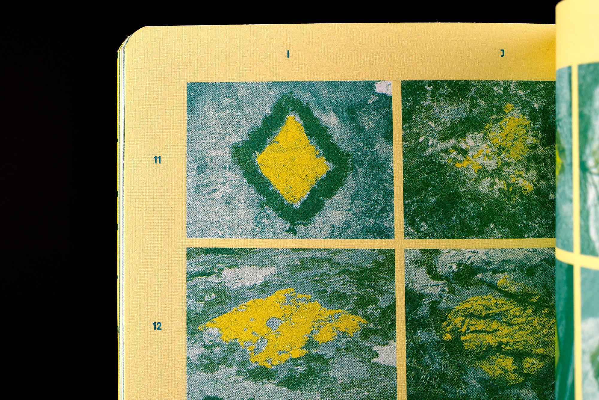 BB02 Losanges sur pierres des Alpes suisses - pages 38-39, détail de spécimens